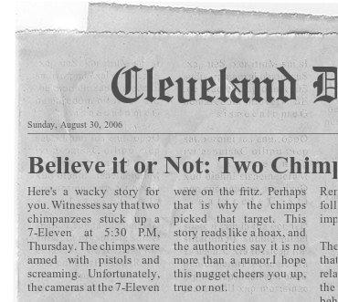 News about Chimp Joe